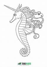 Seahorse Coloring Frogburps Template Completed Done Entries Older sketch template