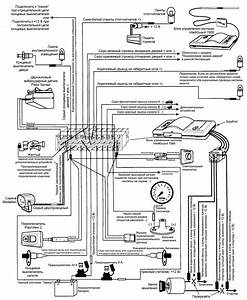 clifford g5 alarm wiring diagrams imageresizertoolcom With clifford alarm wiring diagram