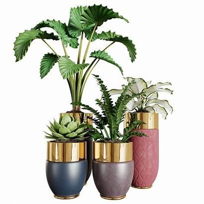 Plants Interior Blender Documentation Ratings Faq Blendermarket