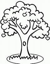 Tree Apple Coloring Popular sketch template