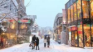 Tokyo Snow 2014 -  U96ea U306e U6771 U4eac