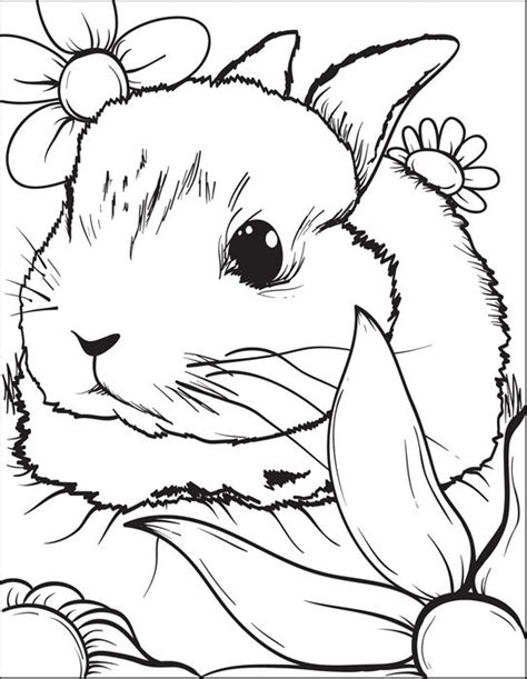 HD wallpapers baby cartoon animals coloring pages
