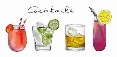Cocktail Cocktails Vector Illustration Hand Drawn Drink