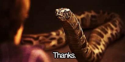 Potter Harry Snake Stone Zoo Reptile Snakes