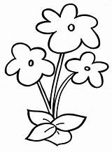 Coloring Flower Pages Preschool sketch template