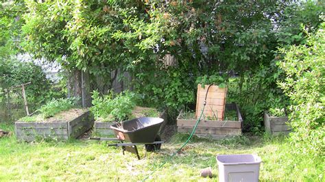 Planting Into Straw Or Hay Bales (permaculture Forum At