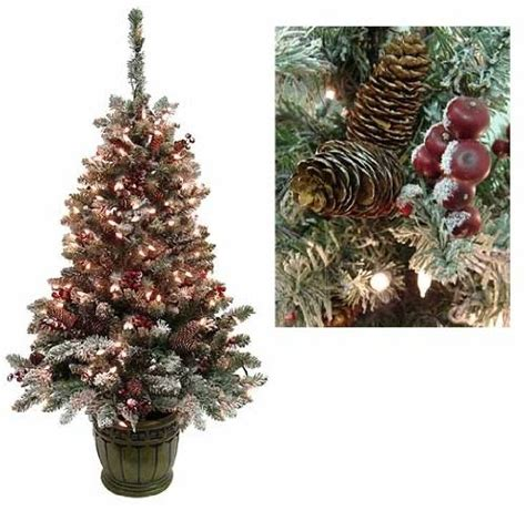 5 pre lit christmas tree 5 pre lit frosted hawthorne fir potted artificial 6553
