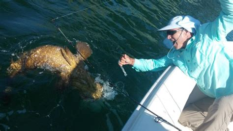 grouper weight goliath 5k smaller zoom