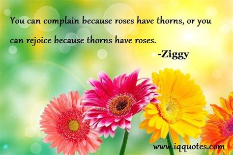 Nice Quotes About Flower