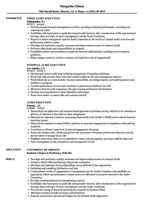 audit executive resume sles velvet