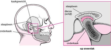 meniscus kaak