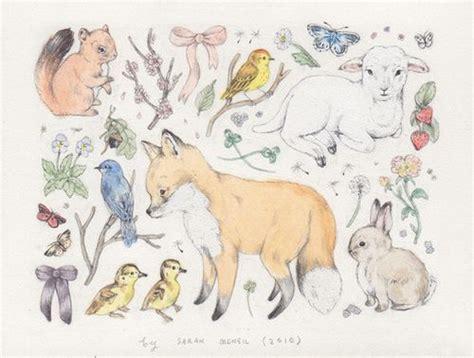 images  cute animal drawings  pinterest