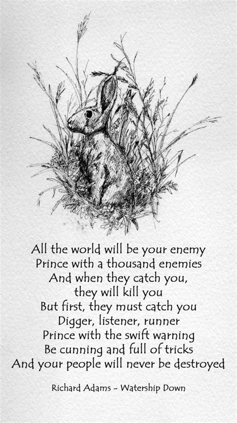 Watership Down by Richard Adams >> thewarrenofsnares | Rabbits and Hares in 2018 | Pinterest