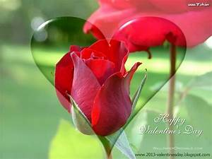 New latest Happy Rose Day 2014 HD Wallpapers
