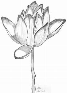 Kunst Zeichnungen Bleistift : zeichentechnik wie schattiere ich meine bilder richtig mit bleistift ~ Yasmunasinghe.com Haus und Dekorationen