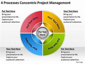 Business Process Diagrams 4 Processess Concentric Project