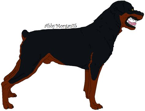 Angry Rottweiler 2/2 By Abbymorgan15 On Deviantart