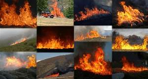 Sample Of Fire Images Of The Dataset