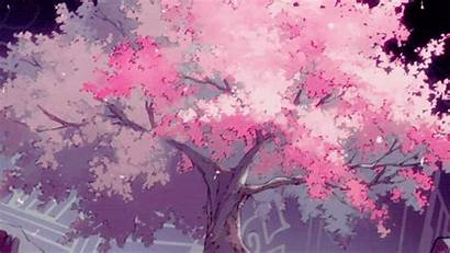 Blossom Cherry Anime Tree Trees Fantasy Background