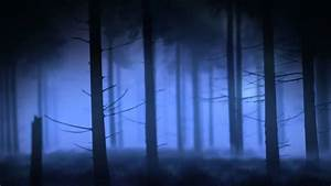 Once Upon A Time Forest Background - YouTube