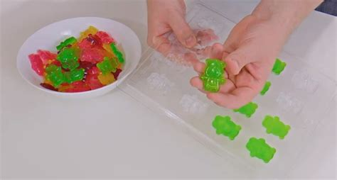 diy gummy bears how to make gummy bears at home home design garden architecture blog magazine