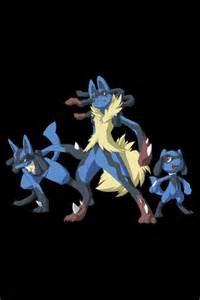 Pokemon Riolu Lucario Mega