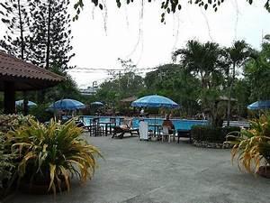 chang nois hotelbewertung palm garden pattaya With katzennetz balkon mit pattaya palm garden