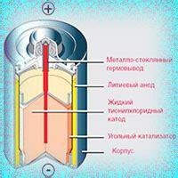 Сибирские учёные создают органические солнечные батарейки . Новости сибирской науки