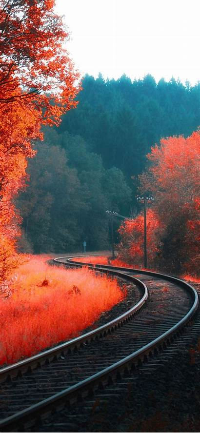 Iphone Autumn Wallpapers Forest Railway Nature Backiee