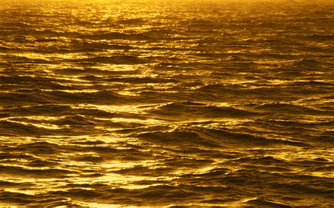 gold wallpapers hd wallpapers pulse