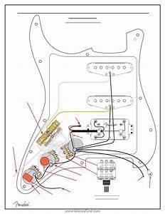 Fender American Standard Stratocaster Hss Shawbuckertrade
