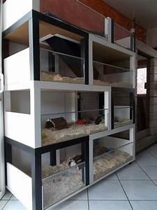 Meerschweinchen Gehege Ikea : un meuble cochon d 39 inde fabriquer petit prix bidouilles ikea ~ Orissabook.com Haus und Dekorationen