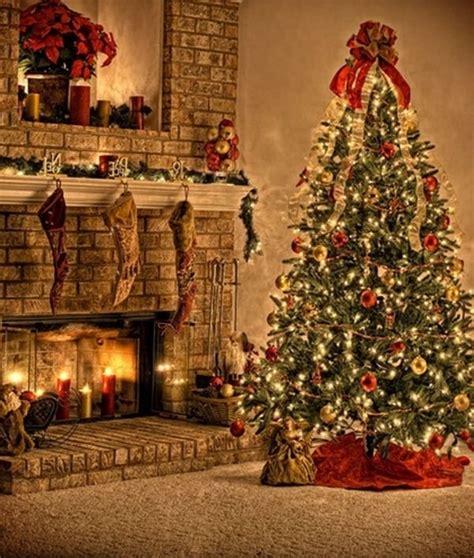 beautiful christmas tree victoria b