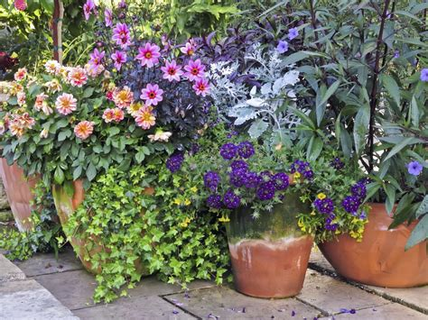 Container Garden Placement Learn How To Plant A