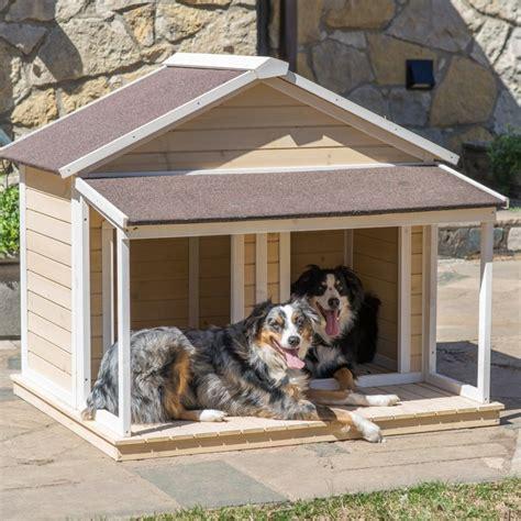 doggone good backyard dog house ideas