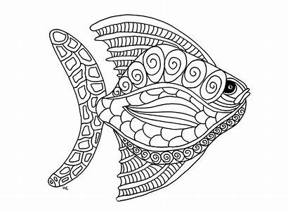 Coloring Pages Animal Adults Fish Adult Animals