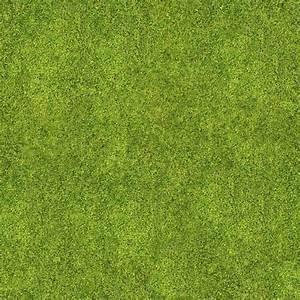 Best 25+ Grass Texture Ideas | Détouré, Vray And ...