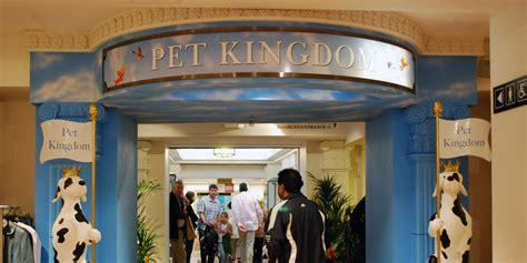 harrods  close famous pet kingdom  sold baby