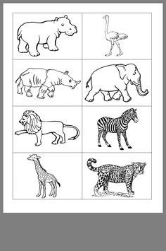 printable african savanna animals  color    crafts   learning activities