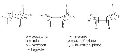 Half Chair Conformation Of Cyclohexane by Organic Chemistry Boat Conformation Axial Hydrogens