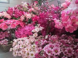 Silk Flower Shop Mud Island Garden Centre