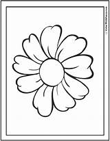 Daisy Coloring Pages Single Colorwithfuzzy sketch template