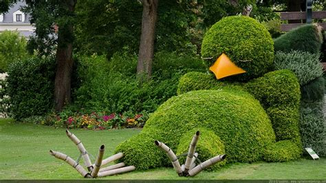 Art Of Gardening Sleeping Bird Topiary  Home Design