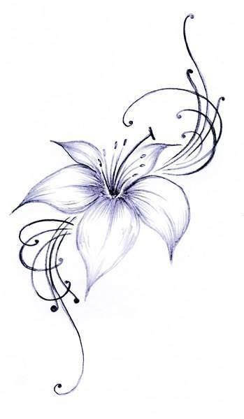 lilie vorlage bildergebnis f 252 r lilie lilien und ideen