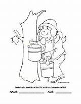 Maple Syrup Coloring Pages Colouring Contest Printable Fun Isle Timber Getcolorings sketch template