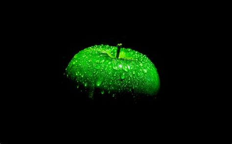 wallpaper buah apel hijau wwwbuahazcom