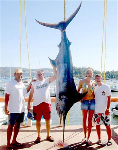 ensenada sportfishing pangas scoring  yellowtail blue