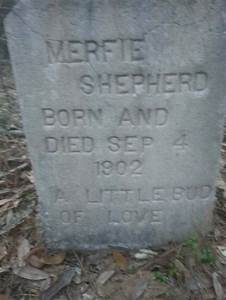 This Guy Found An Abandoned Cemetery In His Great ...
