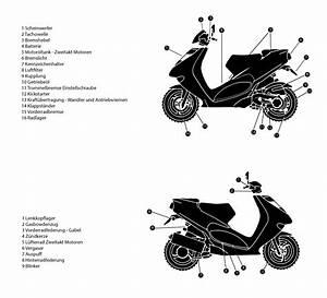 Roller Lieferung Und Aufbau Kosten : motorroller 50 ccm zwei und viertakter jetzt helfe ich mir selbst ~ Watch28wear.com Haus und Dekorationen