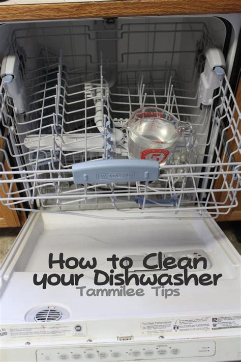 cleaning dishwasher how to clean your dishwasher tammilee tips